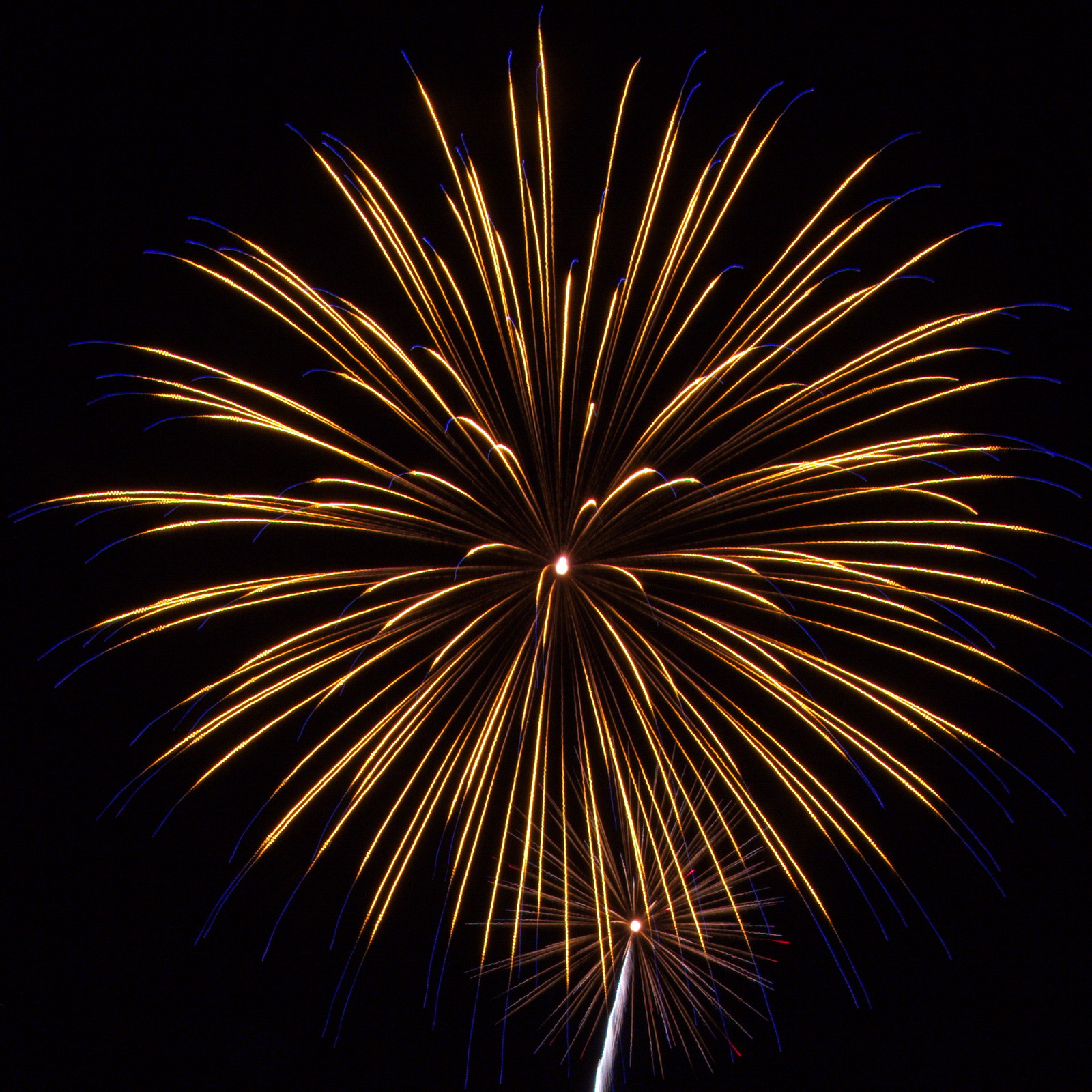 Massachusetts Fireworks: Yellow with blue tips