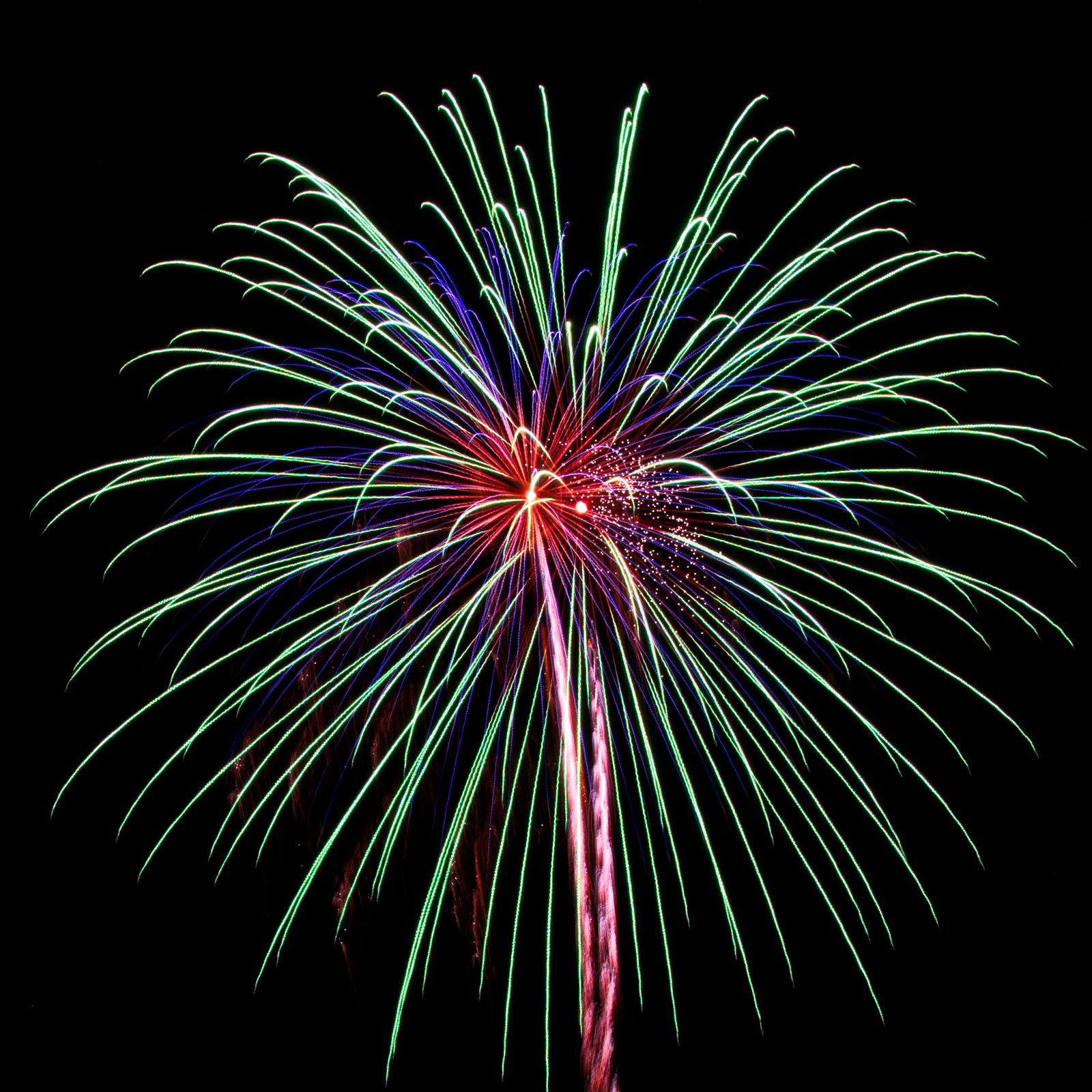 Cape Cod Fireworks: Magnificent multicolor burst
