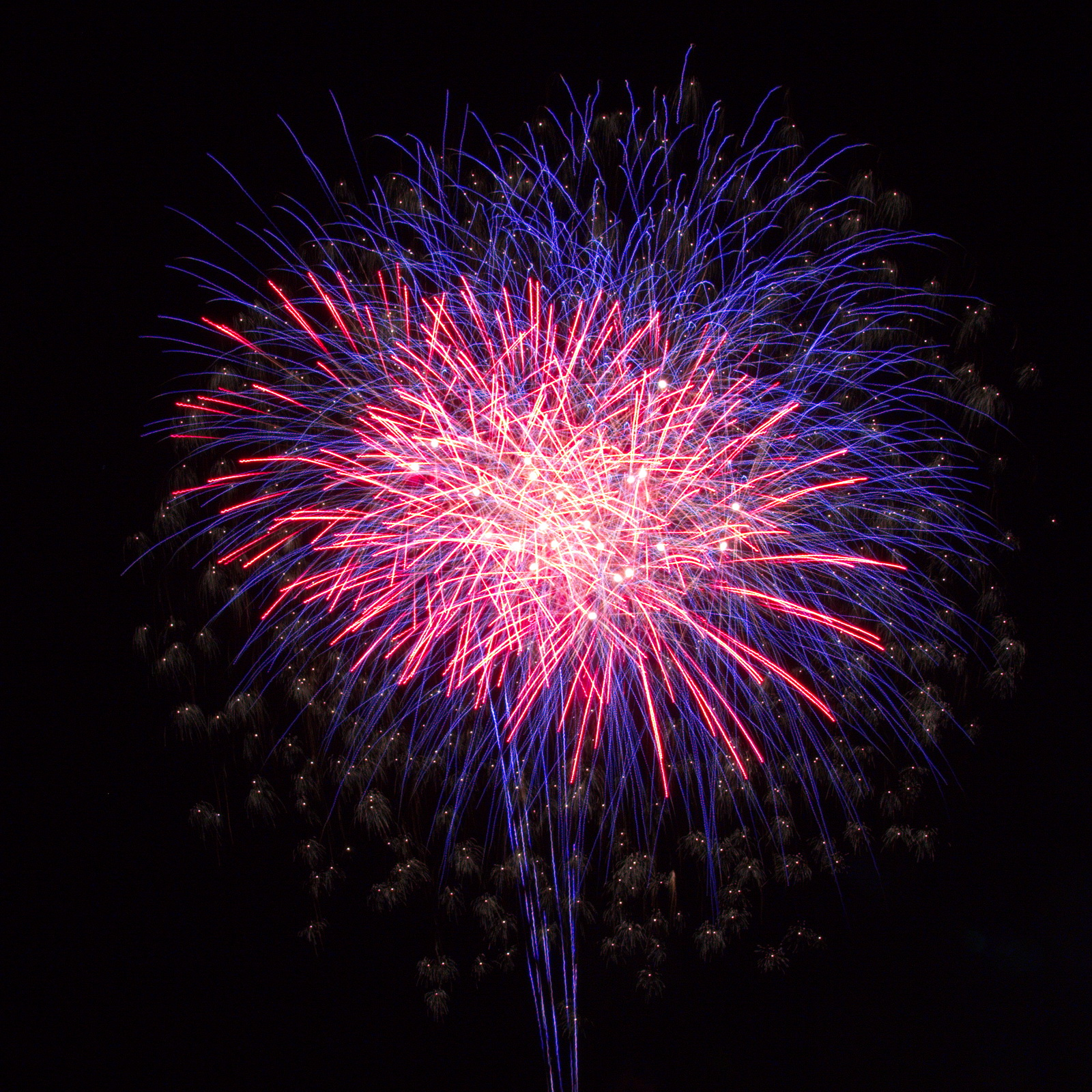 Massachusetts Fireworks: Patriotic, red, white and blue