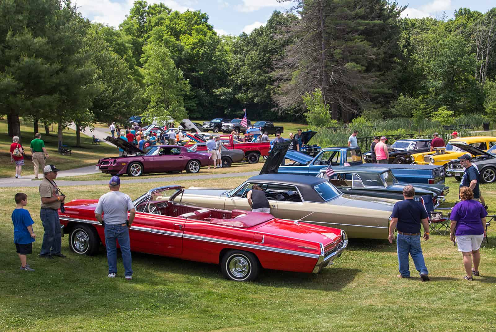 2016 Cars of Summer - Cars in Field Wide View