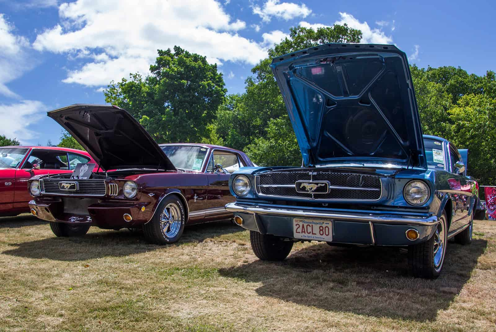 2016 Cars of Summer Mustang Alley