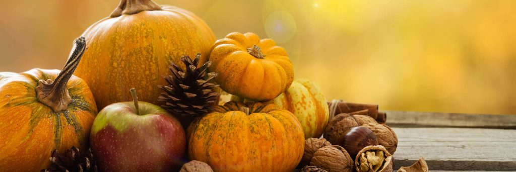 Cape Cod Thanksgiving - Free Dinners